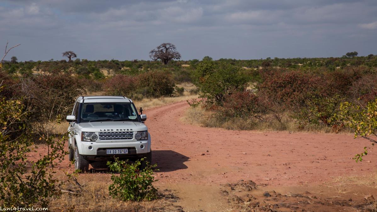 Mapungubwe 5892
