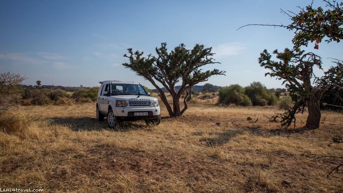 Mapungubwe 7180