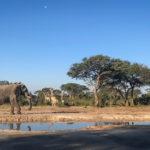 Botswana 2018 – From S to S.